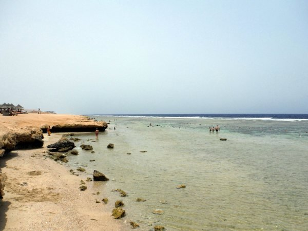 marsa-alam-port-ghalib-resort-andi-9