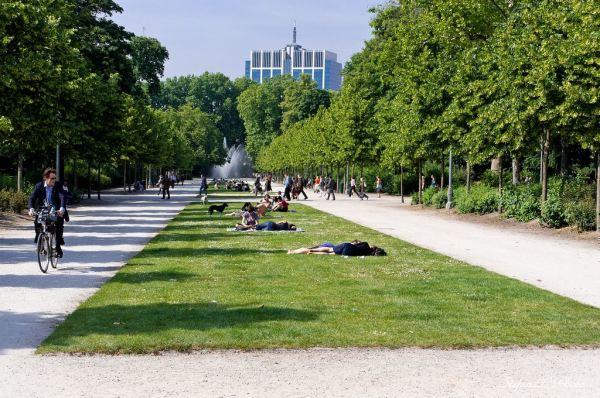 A Királyi Palota melletti park