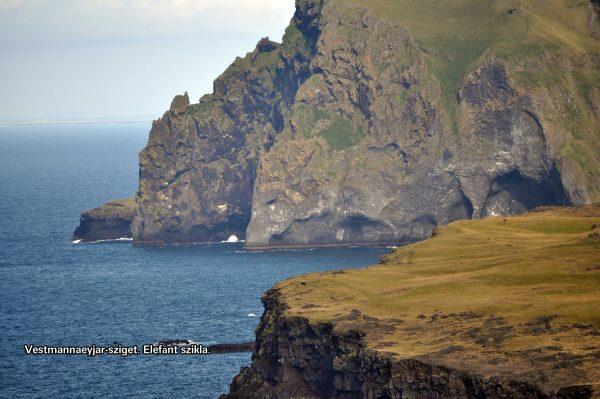 A Westmannaeyjar-szigeten sok lunda él