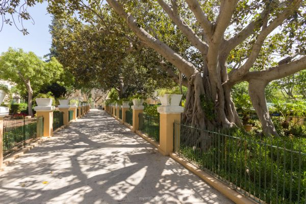 Érdemes egy kis sétát tenni a botanikus kertben
