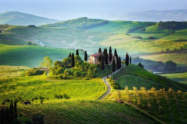 Chianti régiója a világhírű boráról is nevezetes, nemcsak a csodás vidékről