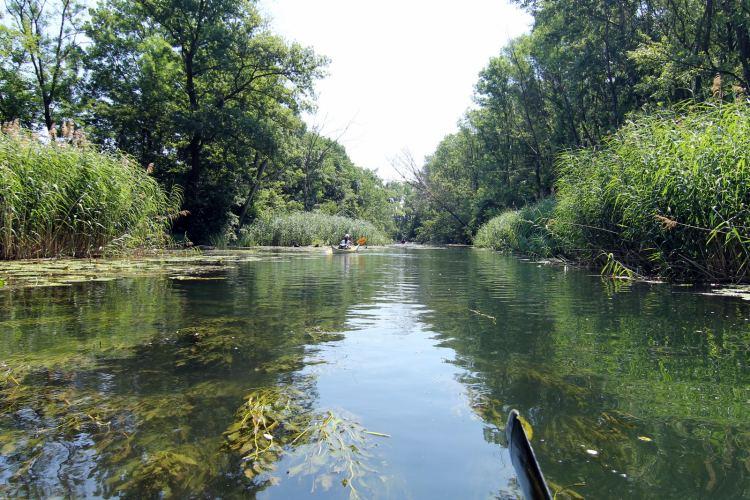 A Szigetköz népszerű vízi túra helyszín