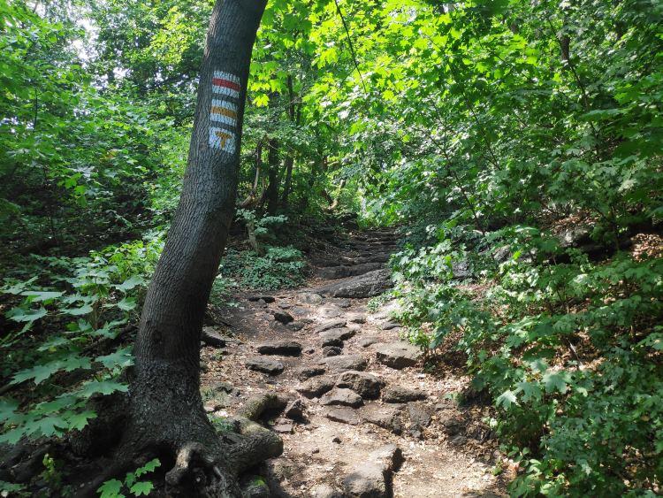 Bazaltköves ösvény vezet fel a kilátóhoz