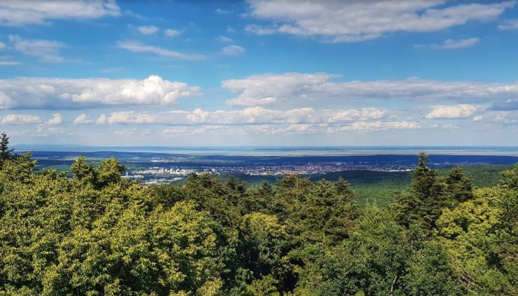 Kilátás Sopronra és mögötte a Fertő-tóra