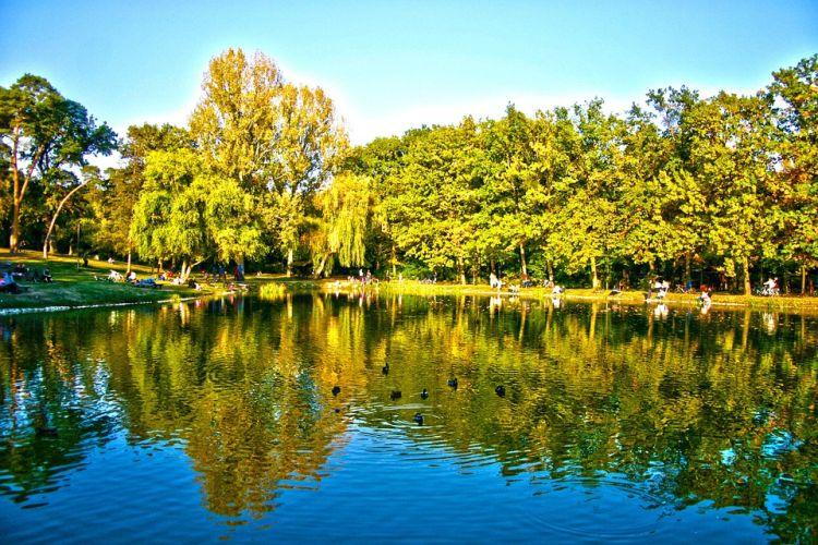A Békás-tó remek pihenőhely a parkban