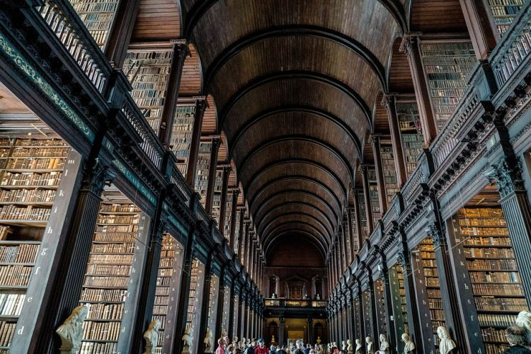A könyvtár fantasztikus belülről