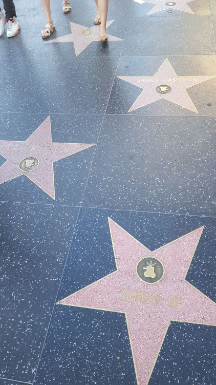 A Walk of Fame csillagjai