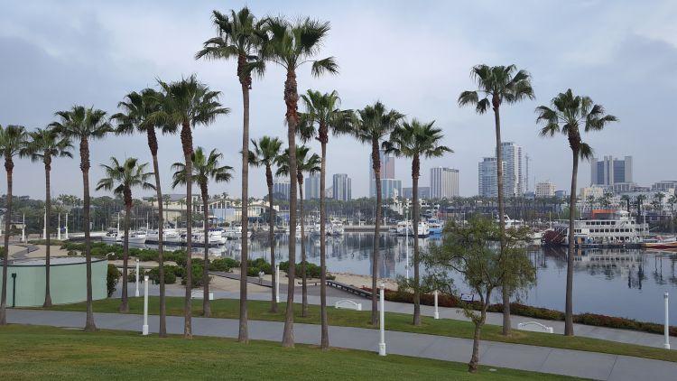 Long Beach reggel