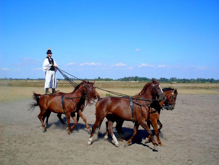 Bugac is az ősi pásztoréletet mutatja be