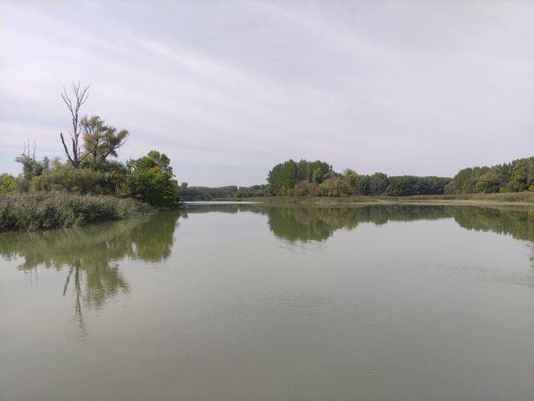 Amikor itt jártam, két csónakkal is voltak a nyugodt vízen